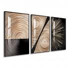 Cuadro con marco tríptico Nature plunas 1550 cm